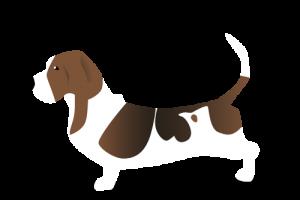 al camping Belvedere, i cani sono ammessi
