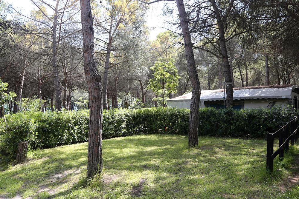 Camping belvedere piazzole ombreggiate piscine e servizi - Piscina piazzola ...